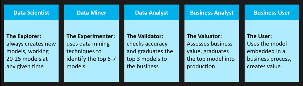 The data science team roles