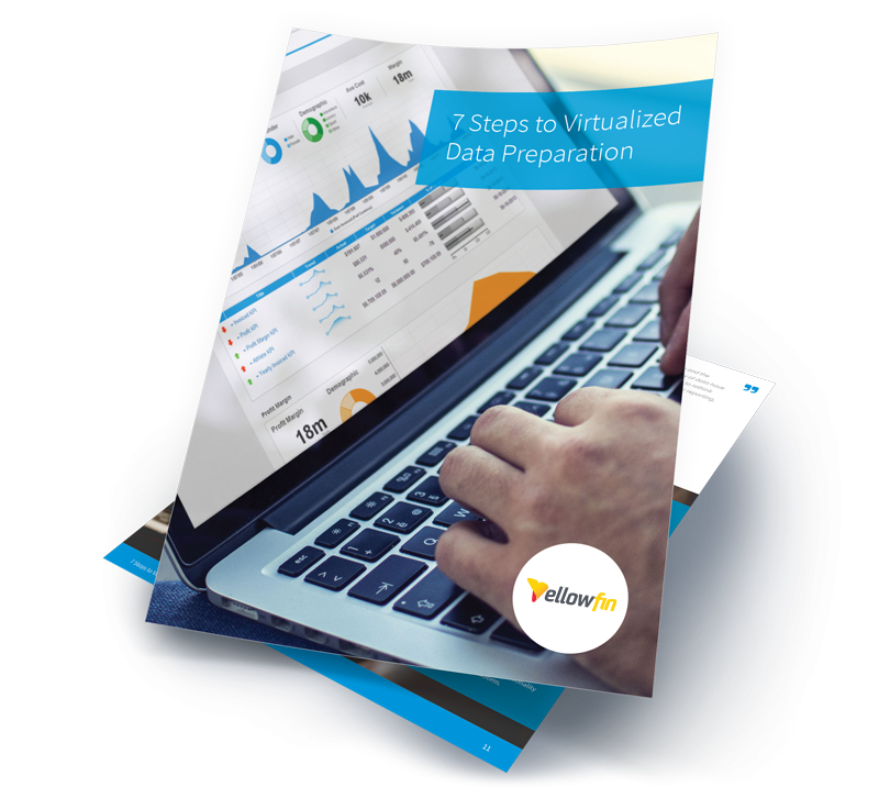 Virtualized data preparation